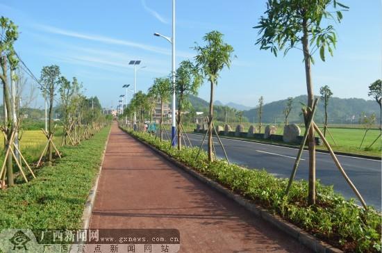 """广西首条乡村彩色自行车绿道亮相""""七彩田野""""区"""