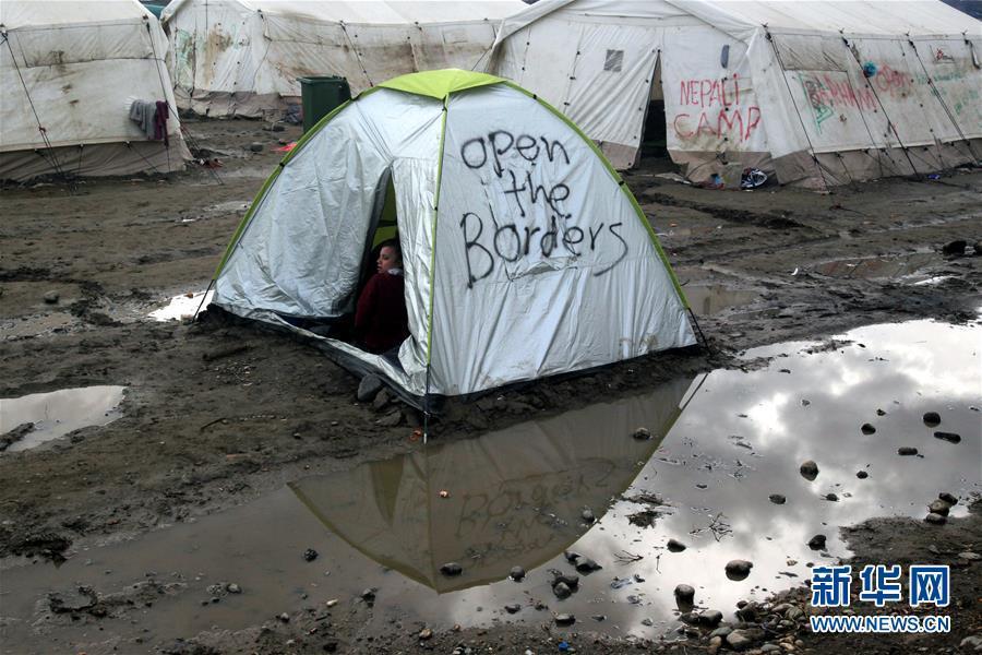 自欧洲难民危机发生以来,经由希腊等巴尔干地区国家抵达德国直至北欧