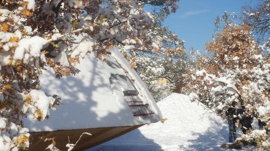雪中的森林木屋